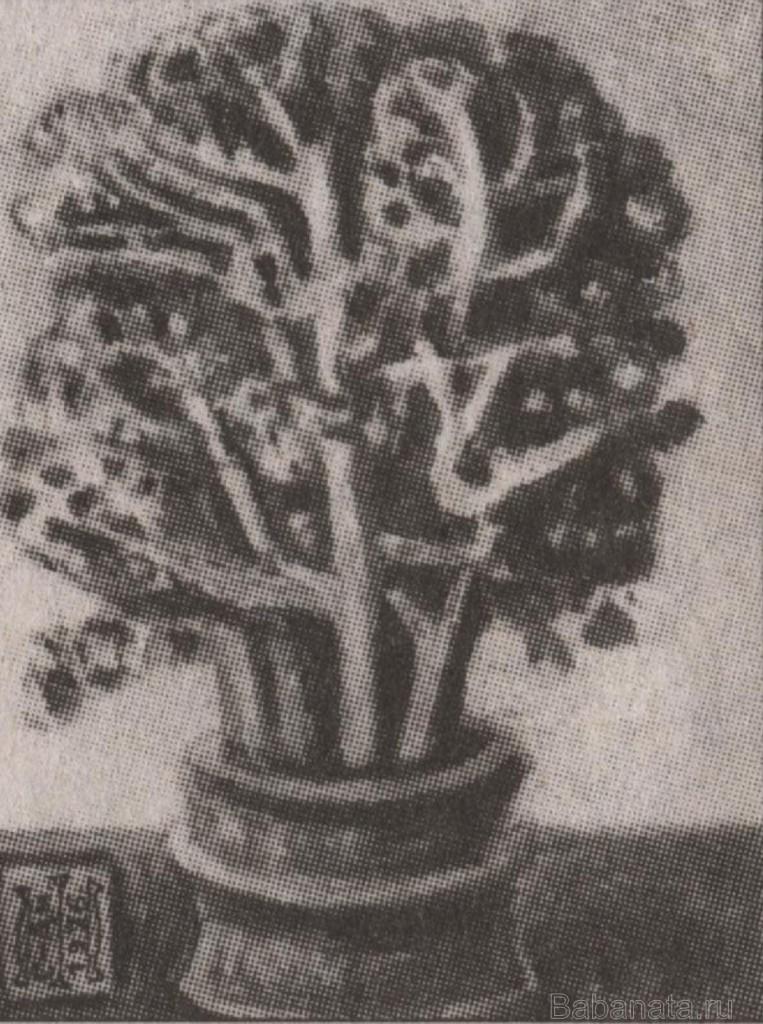 semenov-amurskij 001