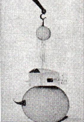 клевогин191