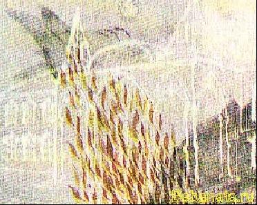кузьмин г11